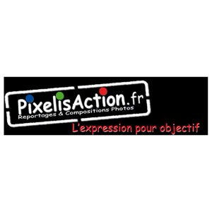 pixelisaction